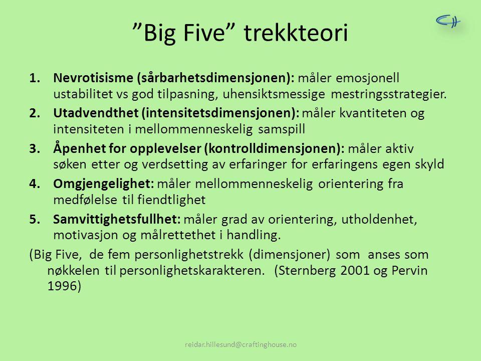 Big Five trekkteori Nevrotisisme (sårbarhetsdimensjonen): måler emosjonell ustabilitet vs god tilpasning, uhensiktsmessige mestringsstrategier.