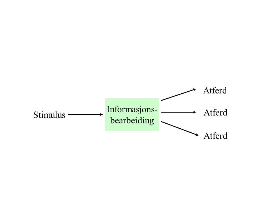 Atferd Informasjons- bearbeiding Stimulus Atferd
