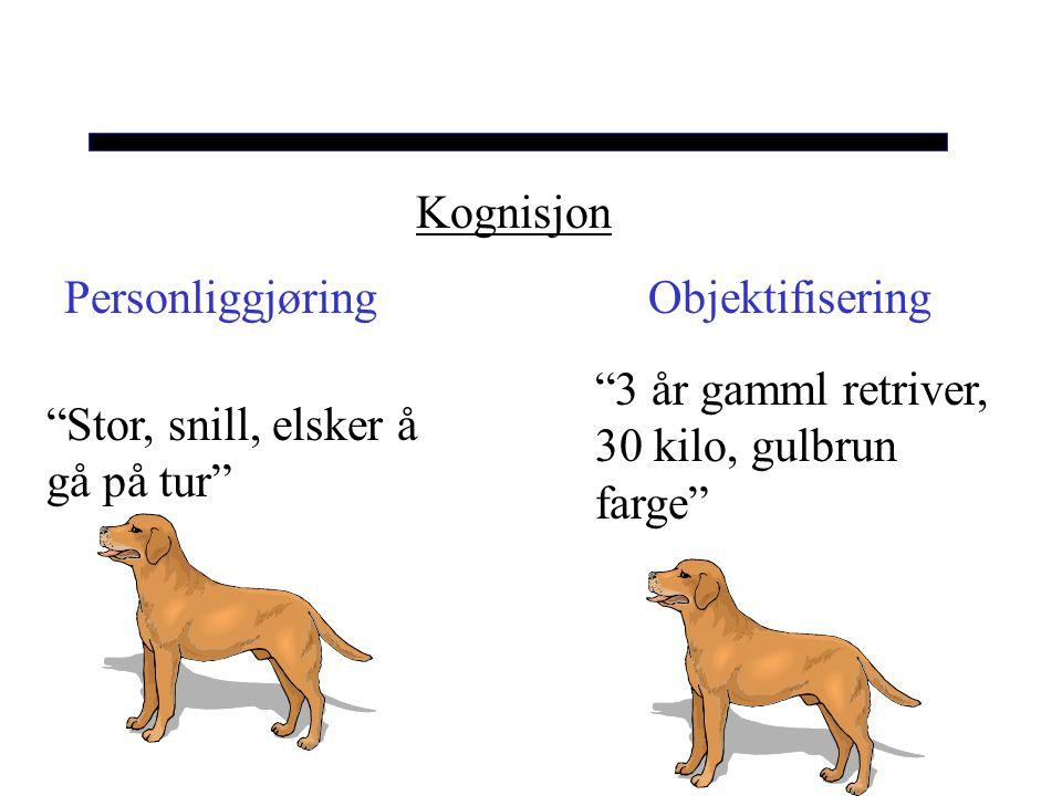 Kognisjon Personliggjøring Objektifisering.