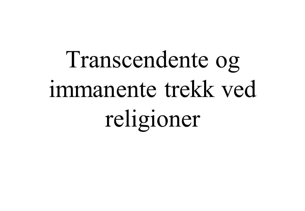 Transcendente og immanente trekk ved religioner