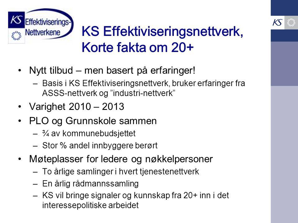 KS Effektiviseringsnettverk, Korte fakta om 20+