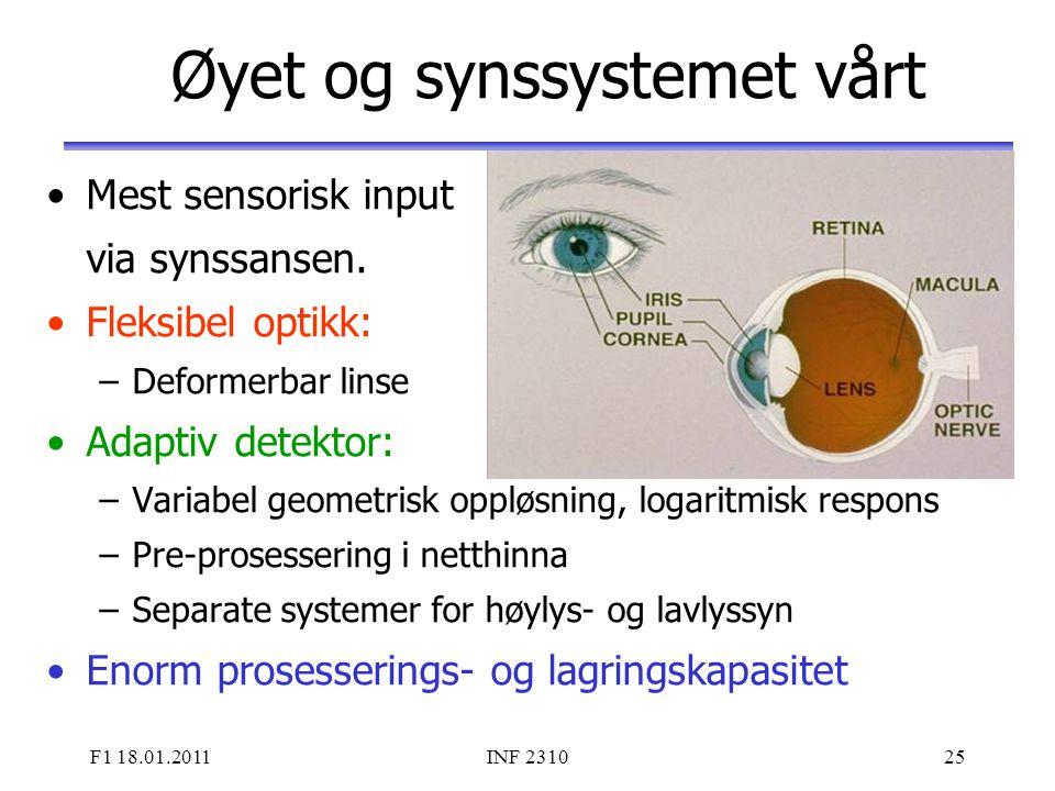 Øyet og synssystemet vårt