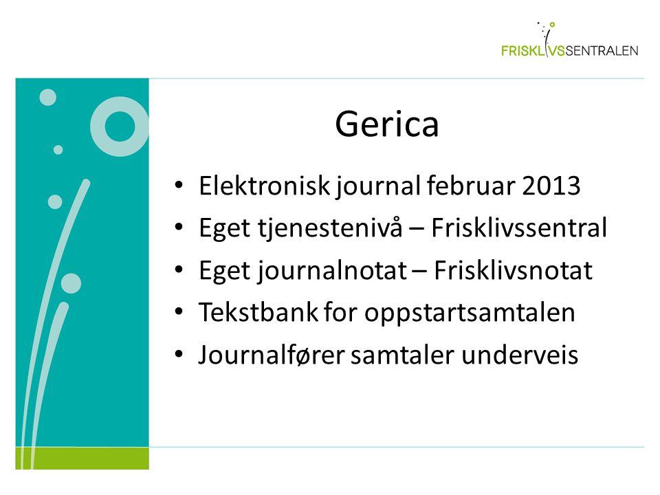 Gerica Elektronisk journal februar 2013