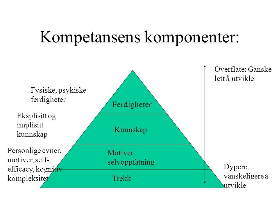 Kompetansens komponenter: