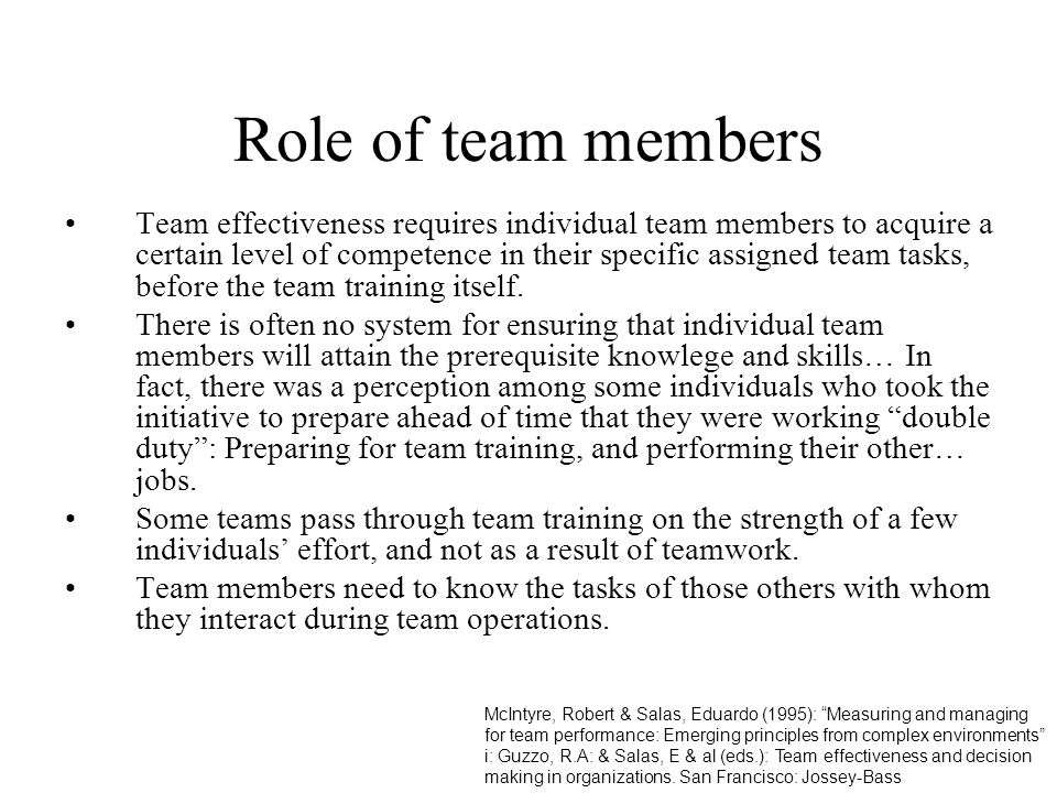 Role of team members