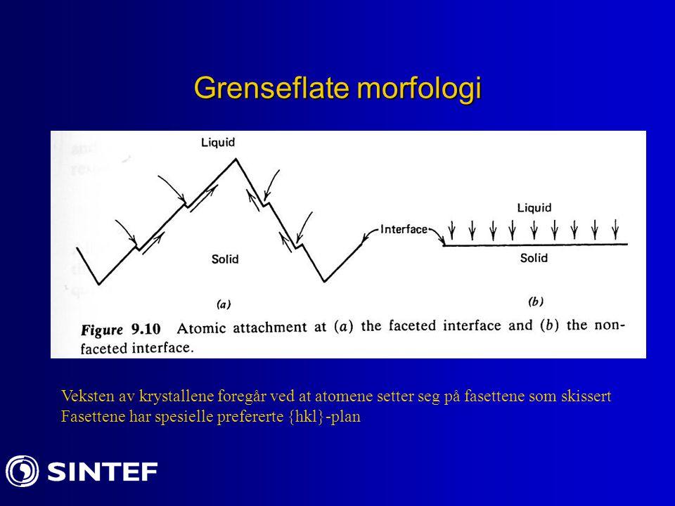 Grenseflate morfologi