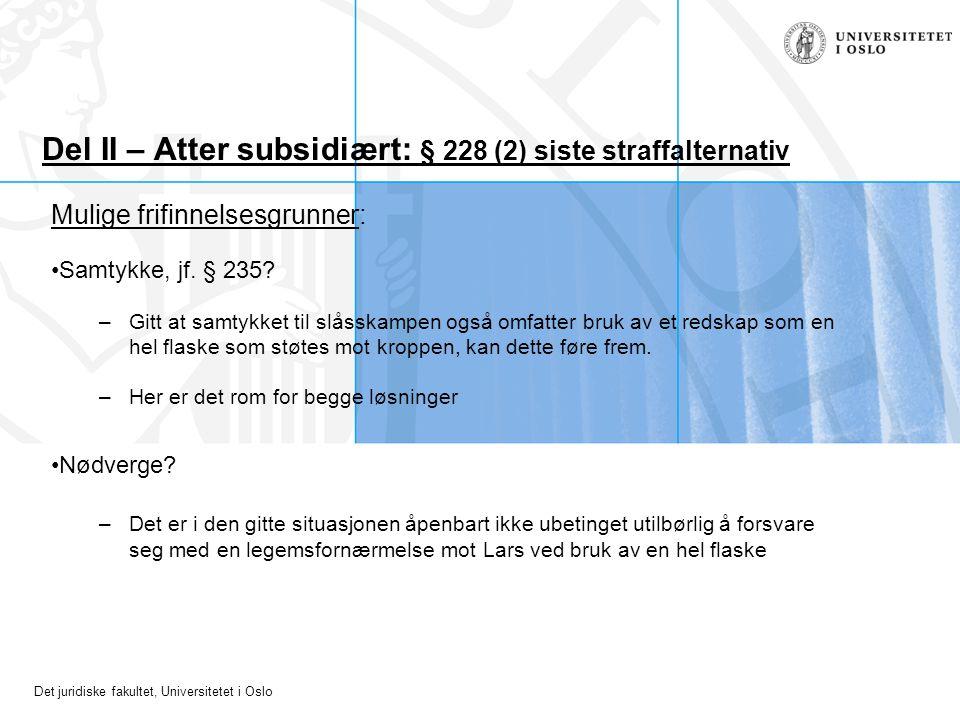 Del II – Atter subsidiært: § 228 (2) siste straffalternativ