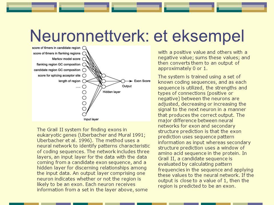 Neuronnettverk: et eksempel