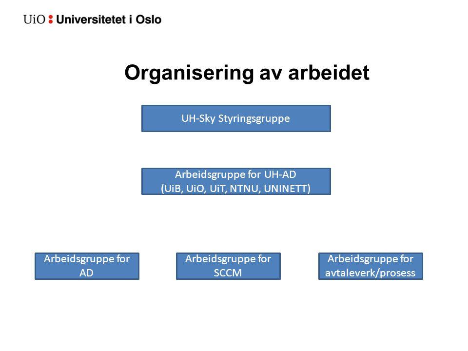 Organisering av arbeidet