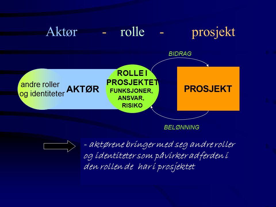 Aktør - rolle - prosjekt