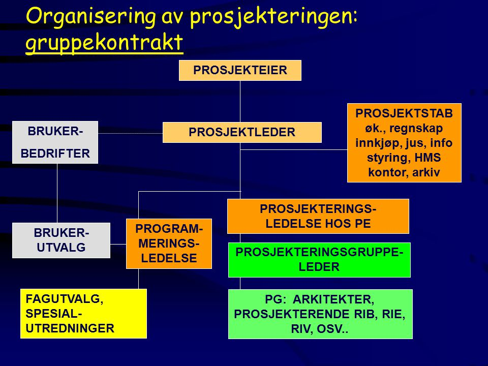 PROGRAM-MERINGS-LEDELSE