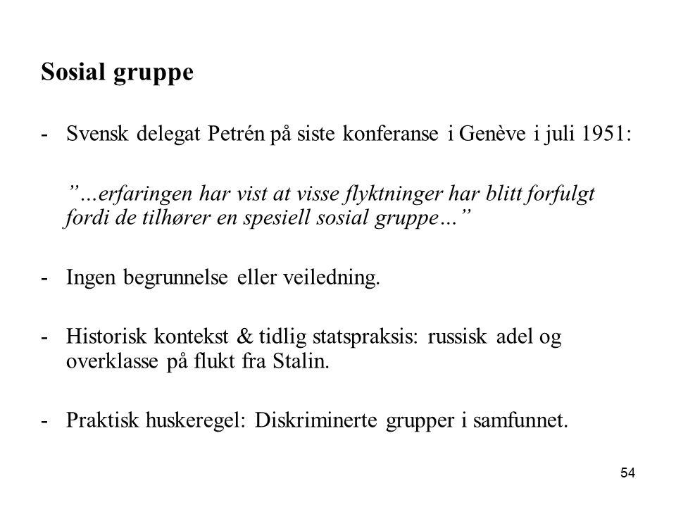 Sosial gruppe Svensk delegat Petrén på siste konferanse i Genève i juli 1951: