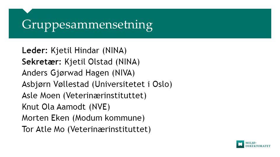 Gruppesammensetning Leder: Kjetil Hindar (NINA)