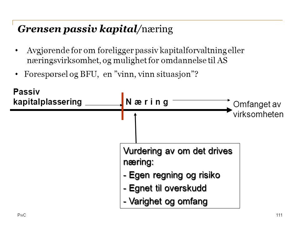 Grensen passiv kapital/næring