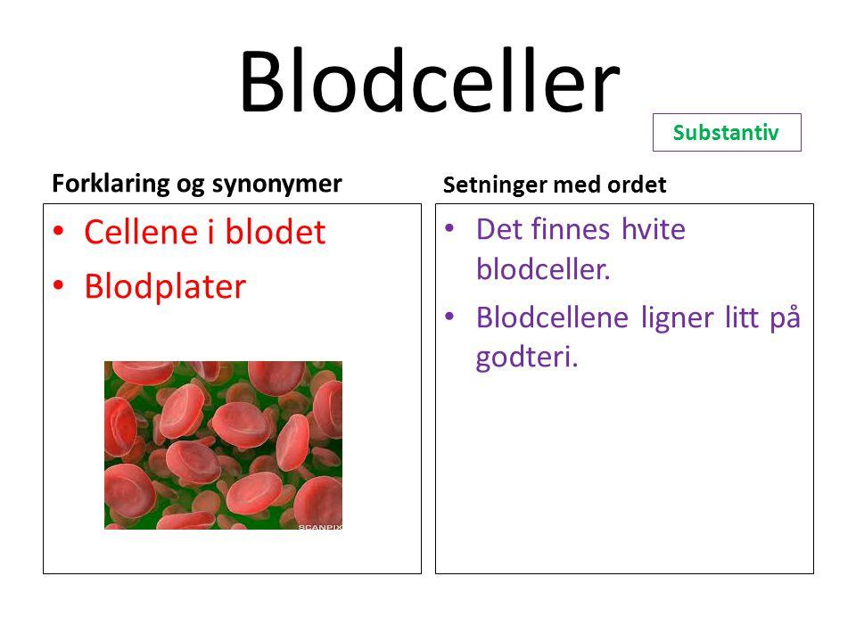 Blodceller Cellene i blodet Blodplater Det finnes hvite blodceller.