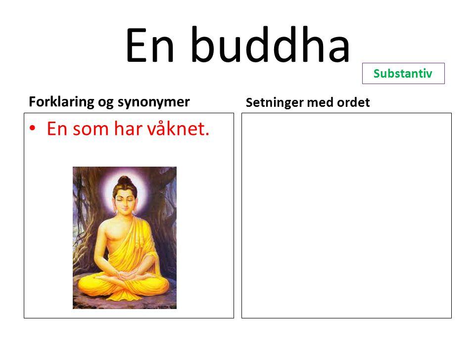 En buddha En som har våknet. Forklaring og synonymer