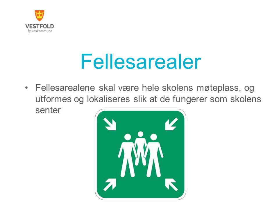 Fellesarealer Fellesarealene skal være hele skolens møteplass, og utformes og lokaliseres slik at de fungerer som skolens senter.