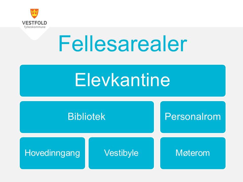 Fellesarealer Elevkantine Bibliotek Hovedinngang Vestibyle Personalrom