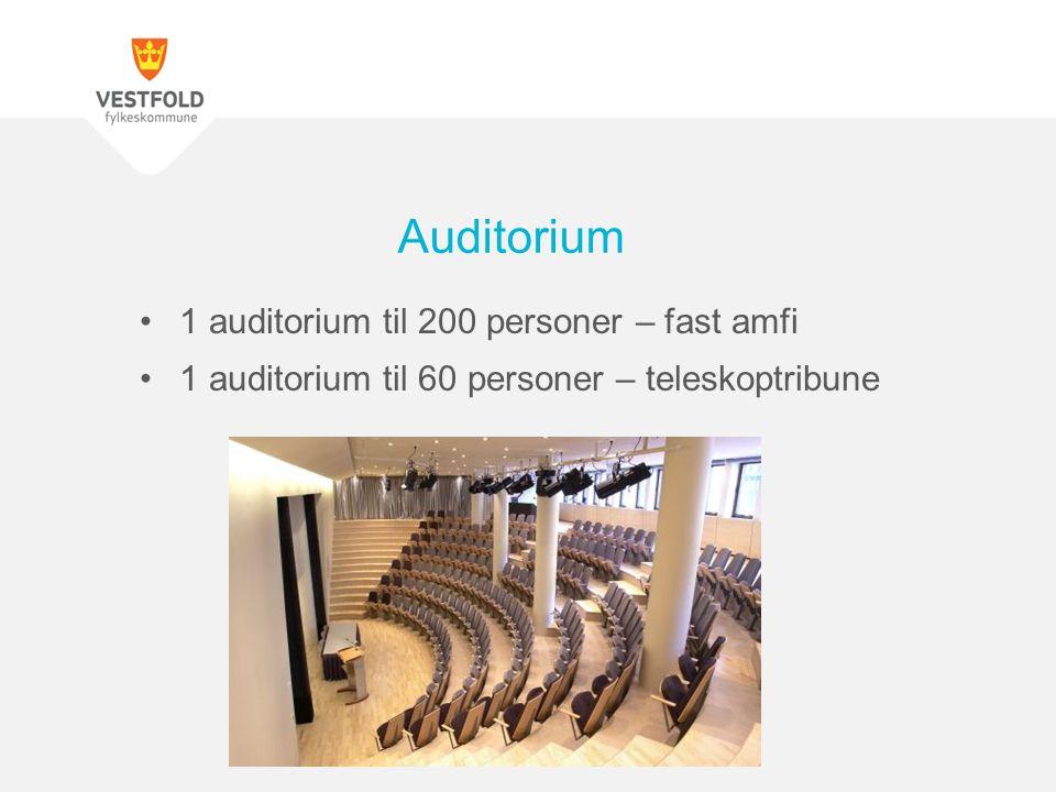 Auditorium 1 auditorium til 200 personer – fast amfi