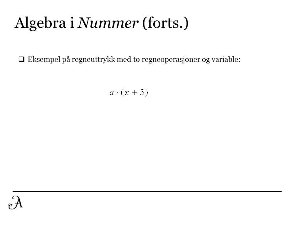Algebra i Nummer (forts.)