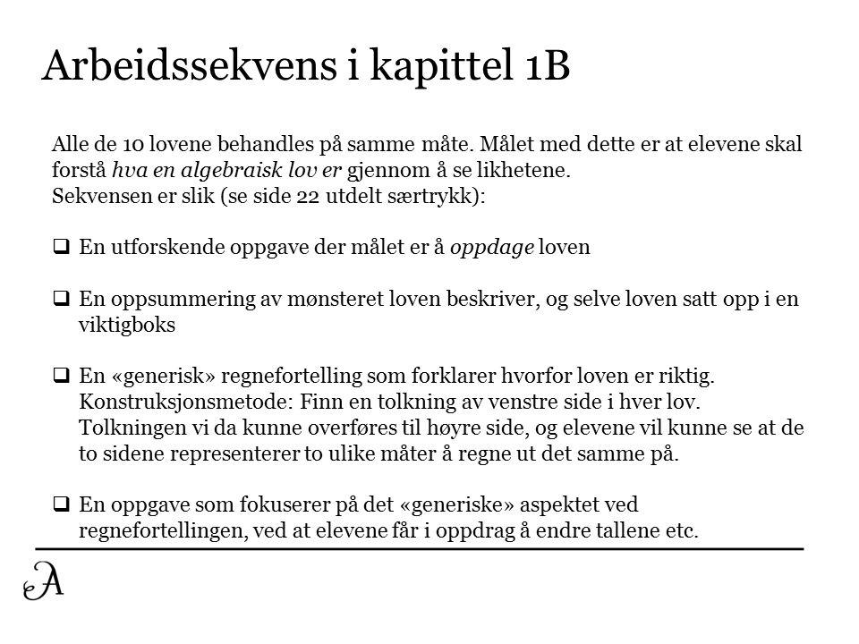 Arbeidssekvens i kapittel 1B