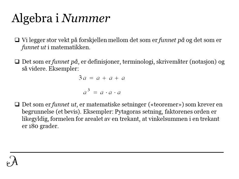 Algebra i Nummer Vi legger stor vekt på forskjellen mellom det som er funnet på og det som er funnet ut i matematikken.
