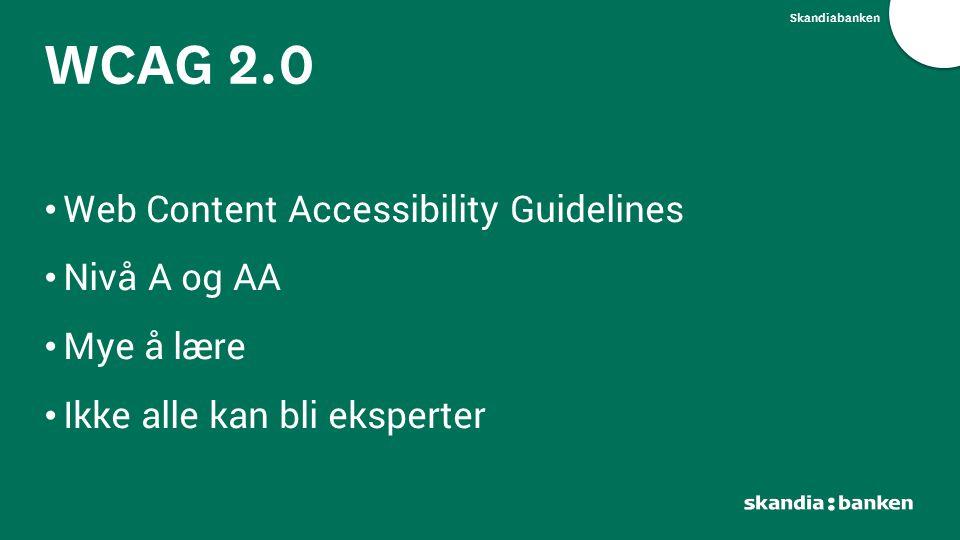 WCAG 2.0 Web Content Accessibility Guidelines Nivå A og AA Mye å lære