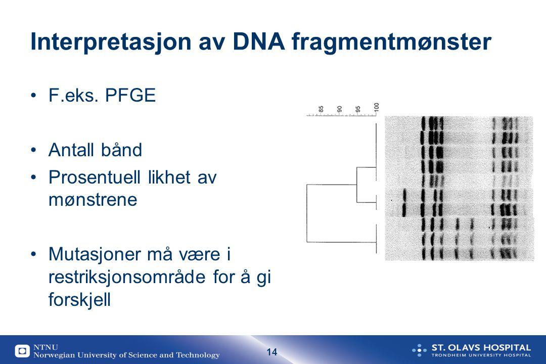 Interpretasjon av DNA fragmentmønster