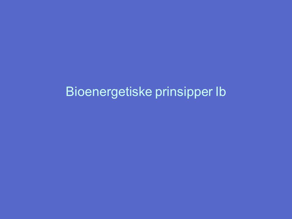 Bioenergetiske prinsipper Ib