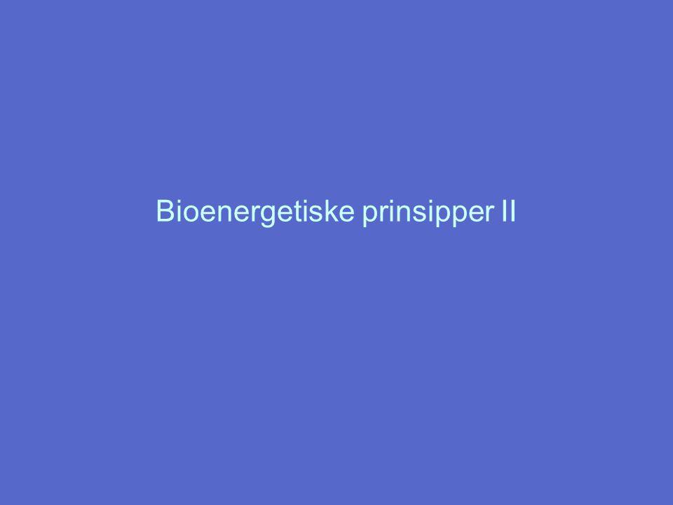 Bioenergetiske prinsipper II