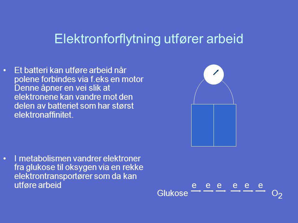 Elektronforflytning utfører arbeid