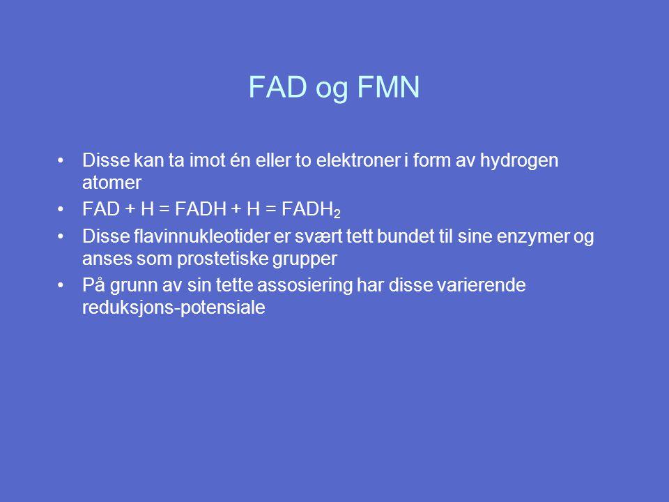 FAD og FMN Disse kan ta imot én eller to elektroner i form av hydrogen atomer. FAD + H = FADH + H = FADH2.