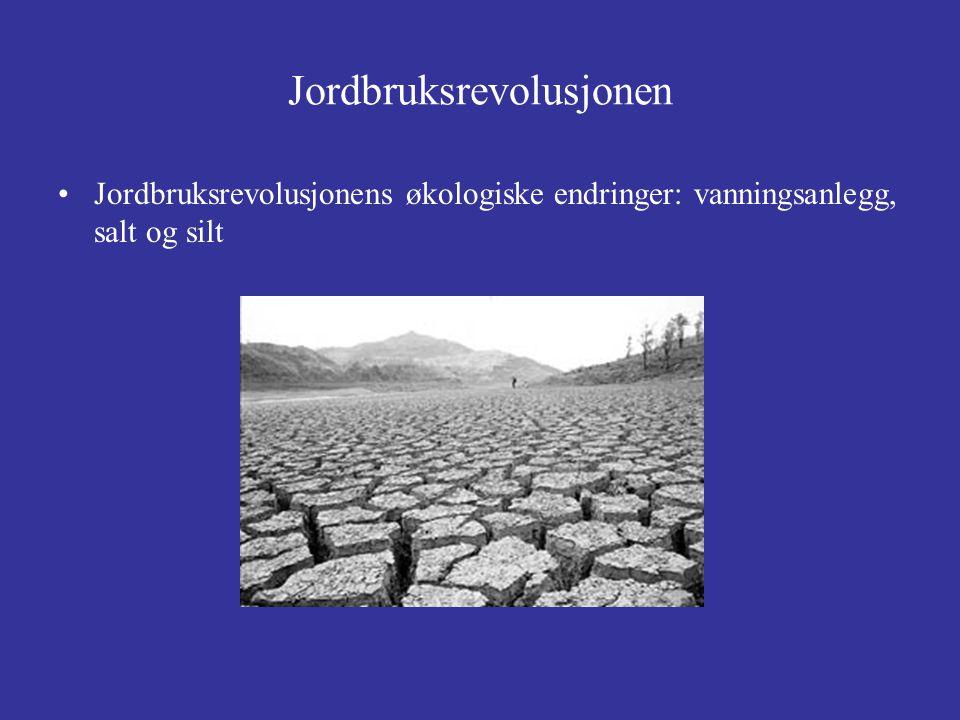 Jordbruksrevolusjonen