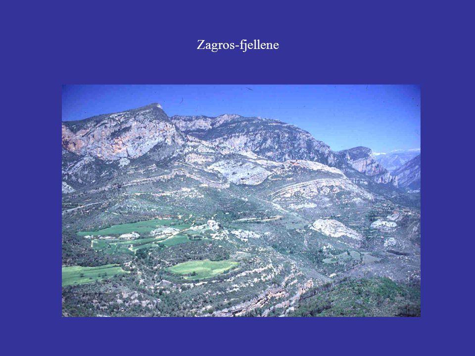 Zagros-fjellene