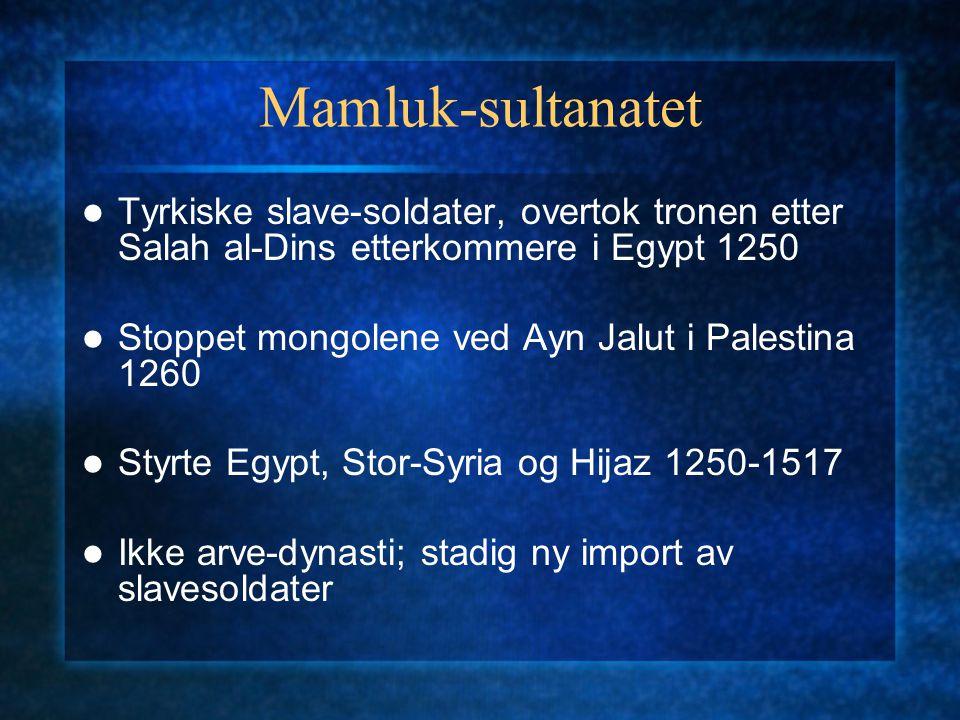 Mamluk-sultanatet Tyrkiske slave-soldater, overtok tronen etter Salah al-Dins etterkommere i Egypt 1250.