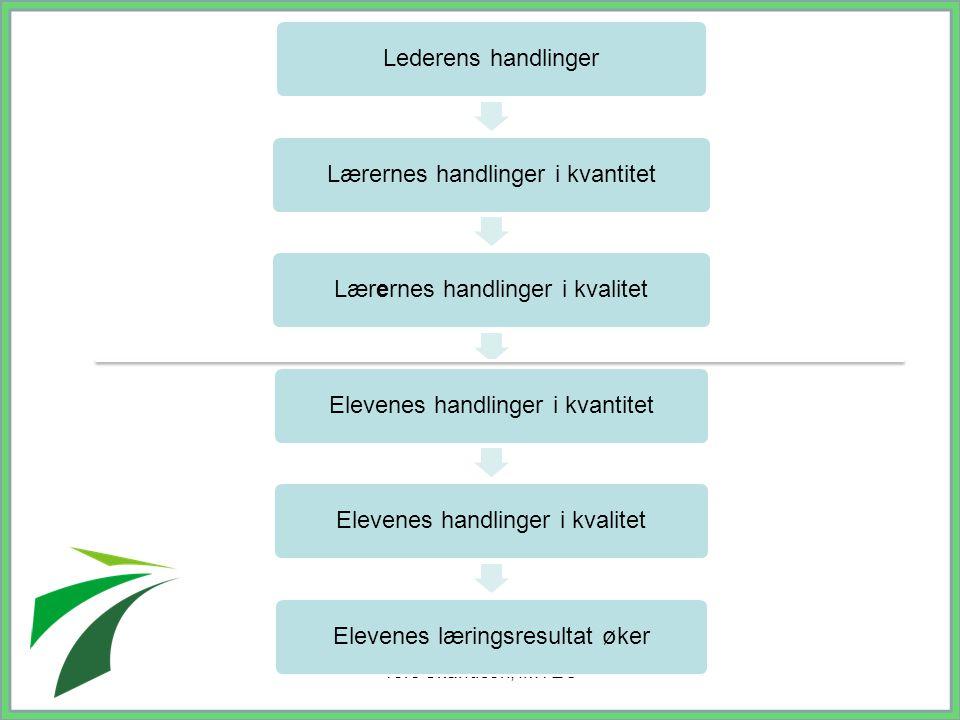 Tore Skandsen, IMTEC Lederens handlinger