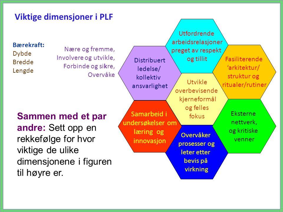 Viktige dimensjoner i PLF
