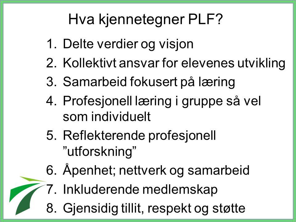 Hva kjennetegner PLF Delte verdier og visjon