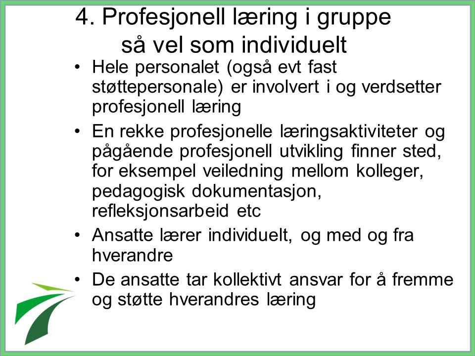 4. Profesjonell læring i gruppe så vel som individuelt