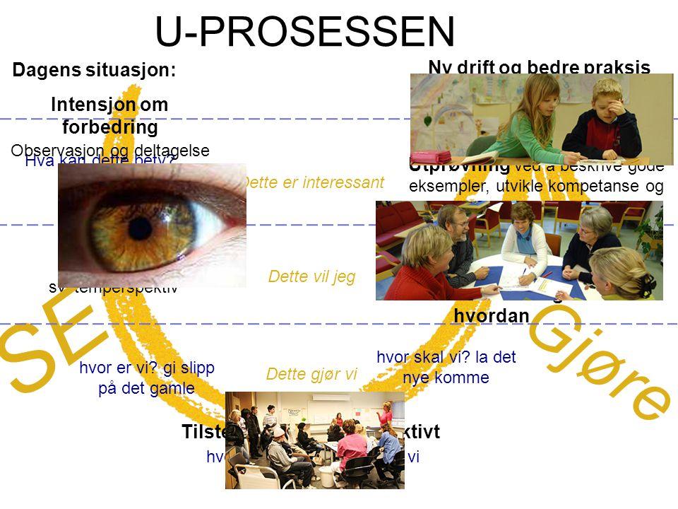 SE Gjøre U-PROSESSEN Dagens situasjon: Ny drift og bedre praksis