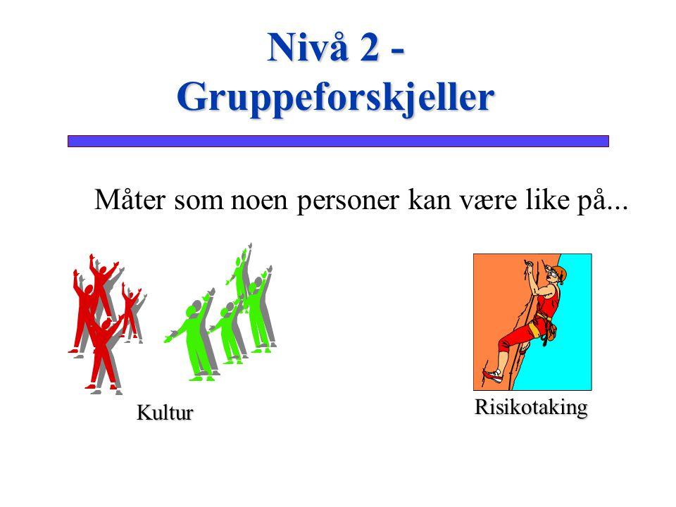 Nivå 2 - Gruppeforskjeller
