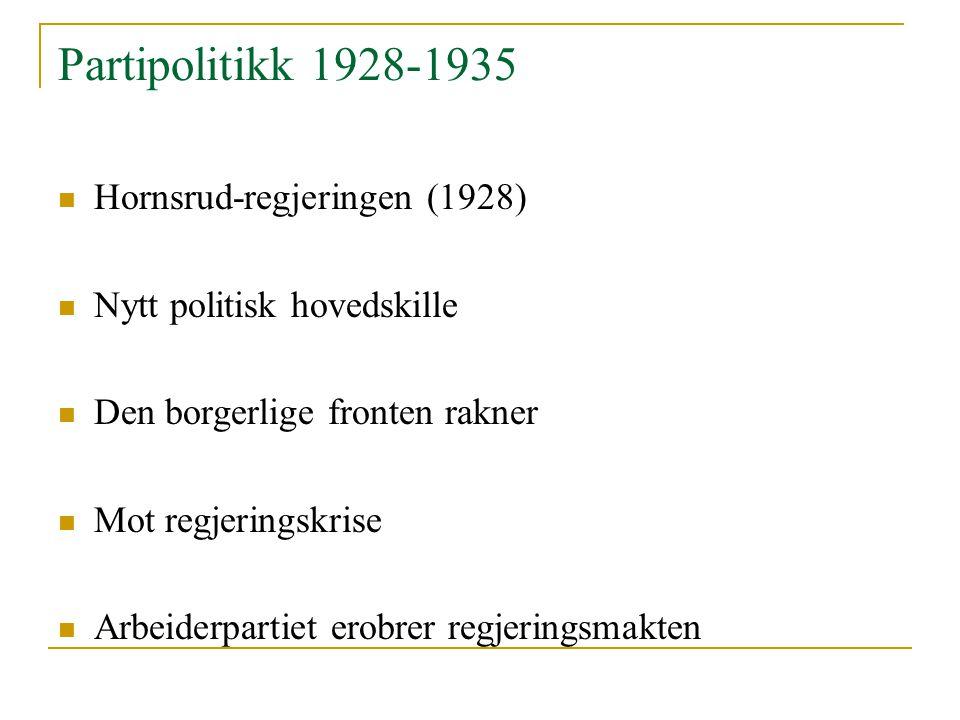 Partipolitikk 1928-1935 Hornsrud-regjeringen (1928)