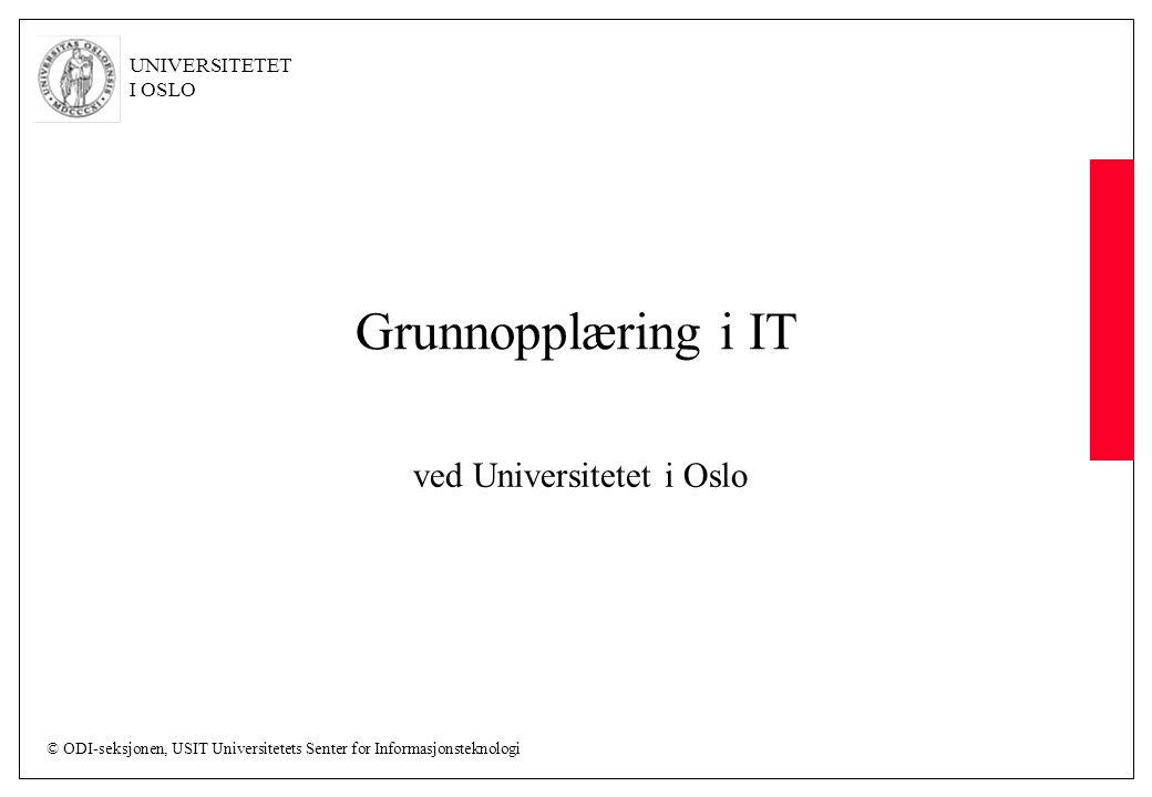 ved Universitetet i Oslo