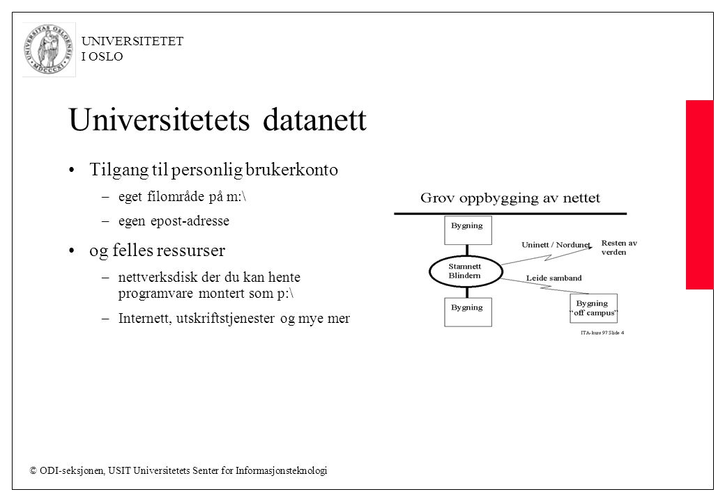 Universitetets datanett