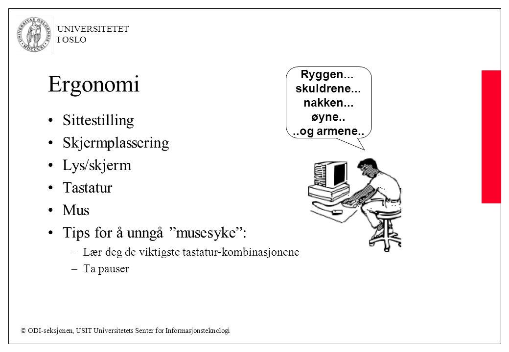Ergonomi Sittestilling Skjermplassering Lys/skjerm Tastatur Mus