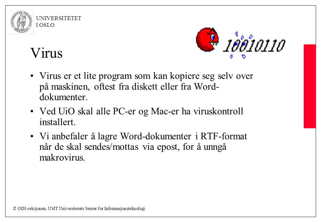 Virus Virus er et lite program som kan kopiere seg selv over på maskinen, oftest fra diskett eller fra Word-dokumenter.