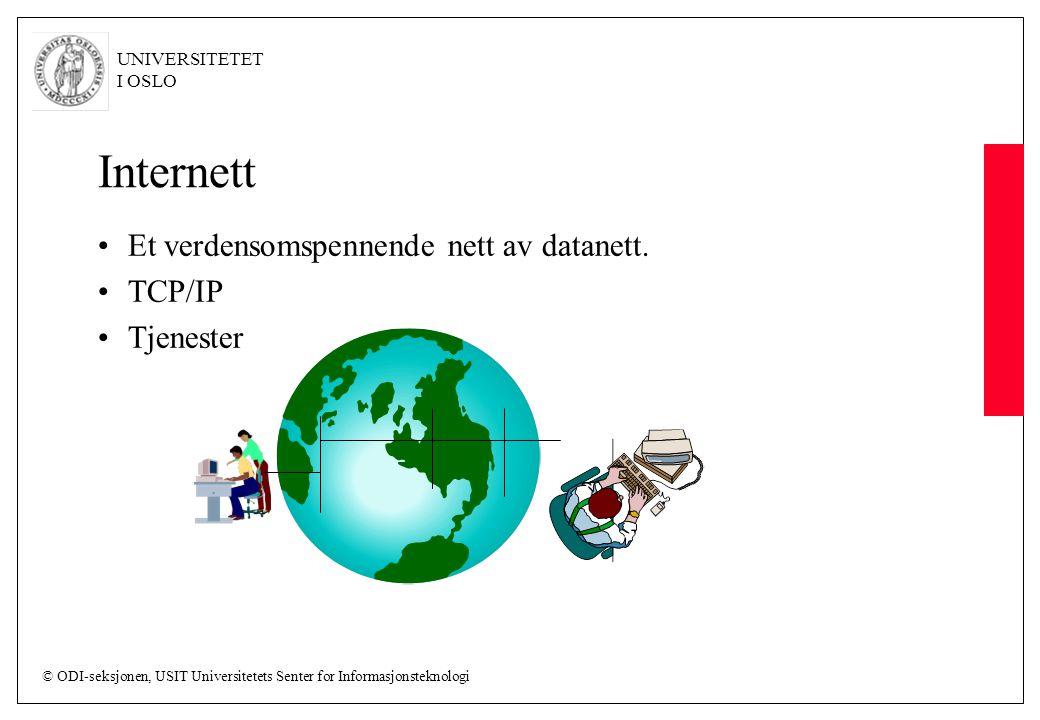 Internett Et verdensomspennende nett av datanett. TCP/IP Tjenester
