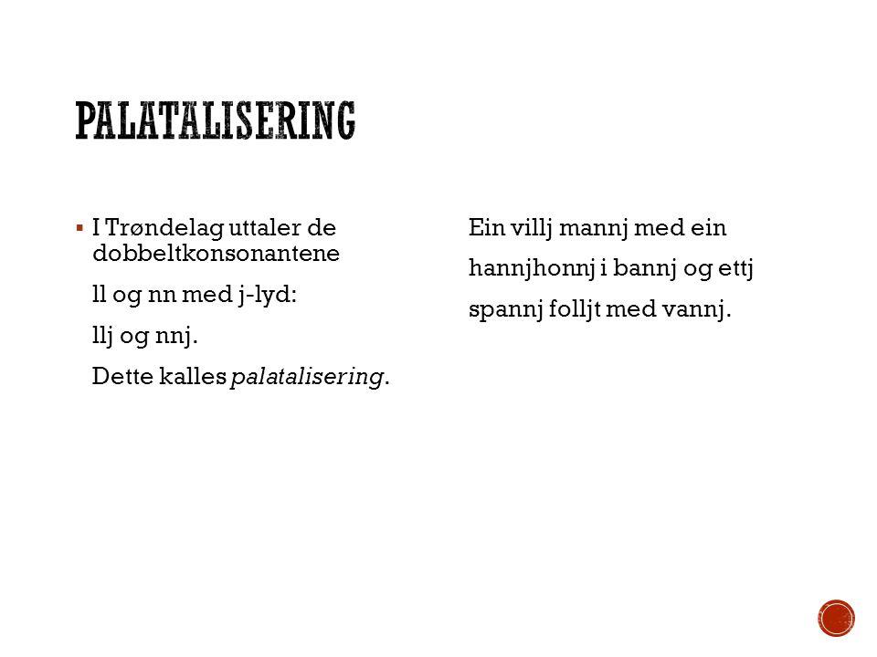 Palatalisering I Trøndelag uttaler de dobbeltkonsonantene