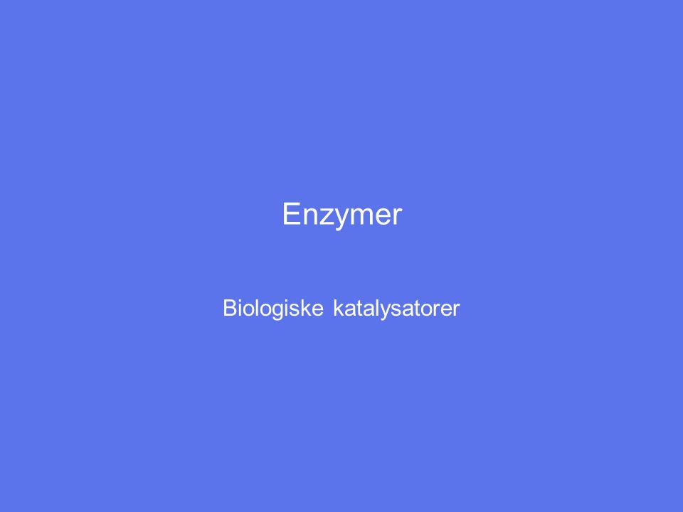 Biologiske katalysatorer