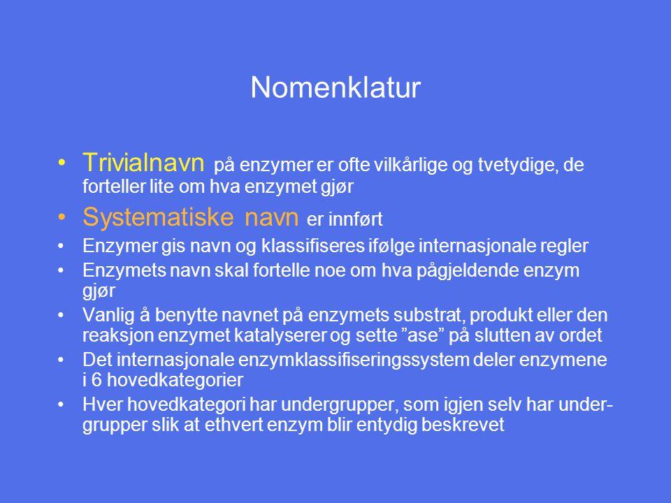 Nomenklatur Trivialnavn på enzymer er ofte vilkårlige og tvetydige, de forteller lite om hva enzymet gjør.